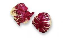 Chicorée rouge de Vérone  © Larousse