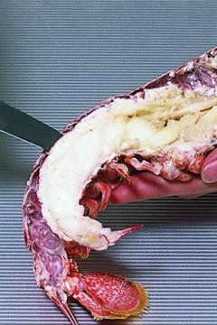 Décortiquer un homard cuit